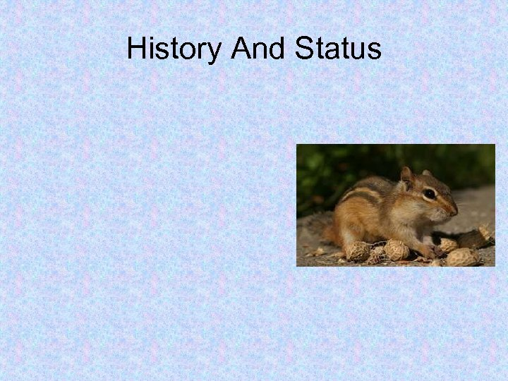 History And Status