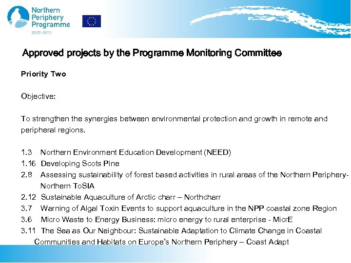 Approved projects by the Programme Monitoring Committee Priority Two Objective: To strengthen the synergies