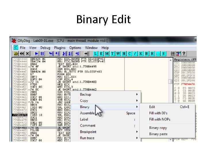 Binary Edit