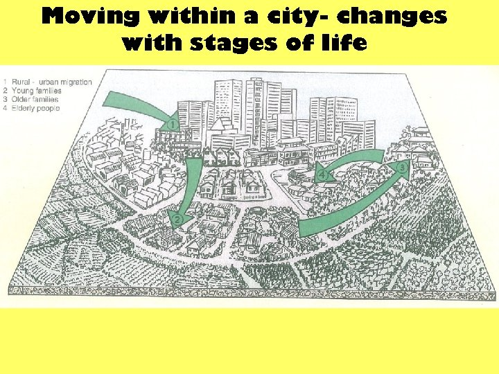 Moving within a city- changes with stages of life