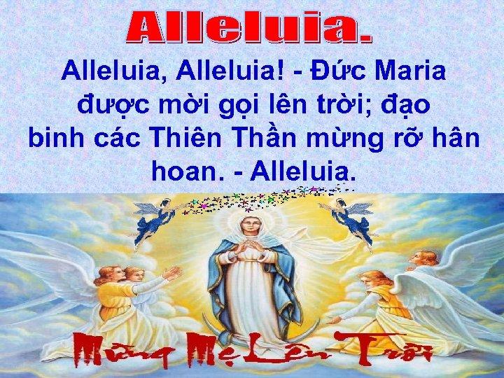 Alleluia, Alleluia! - Đức Maria được mời gọi lên trời; đạo binh các Thiên