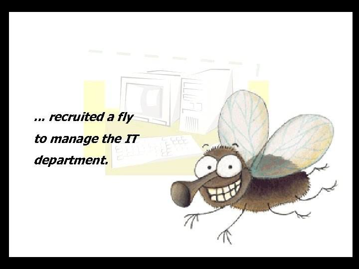 . . . recruited a fly to manage the IT department.