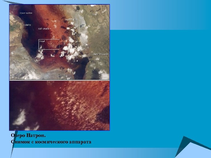 Озеро Натрон. Снимок с космического аппарата