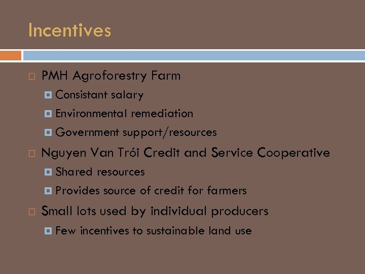 Incentives PMH Agroforestry Farm Consistant salary Environmental remediation Government support/resources Nguyen Van Trói Credit