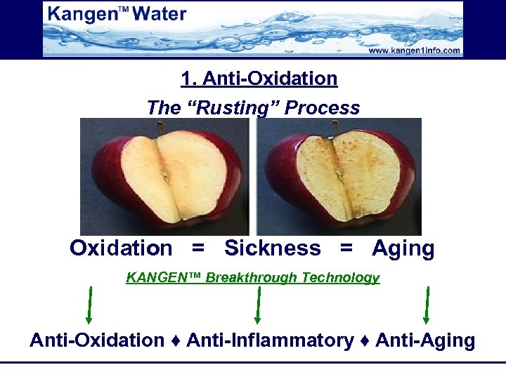 "1. Anti-Oxidation The ""Rusting"" Process Oxidation = Sickness = Aging KANGEN™ Breakthrough Technology Anti-Oxidation"