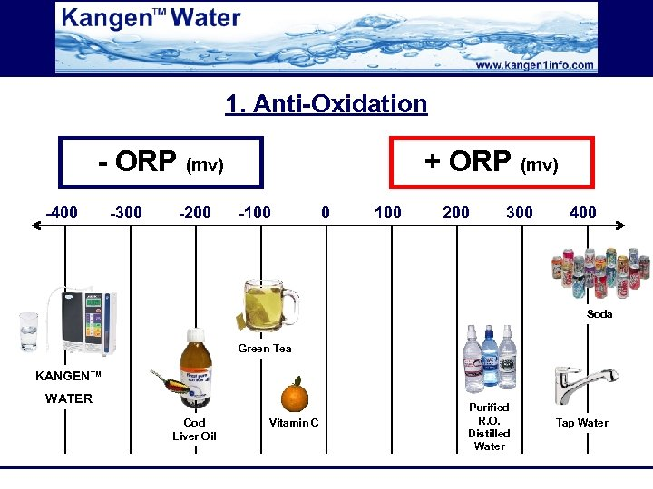 1. Anti-Oxidation - ORP (mv) -400 -300 -200 + ORP (mv) -100 0 100