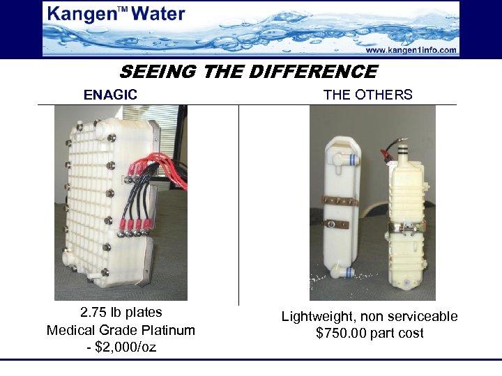 SEEING THE DIFFERENCE ENAGIC 2. 75 lb plates Medical Grade Platinum - $2, 000/oz