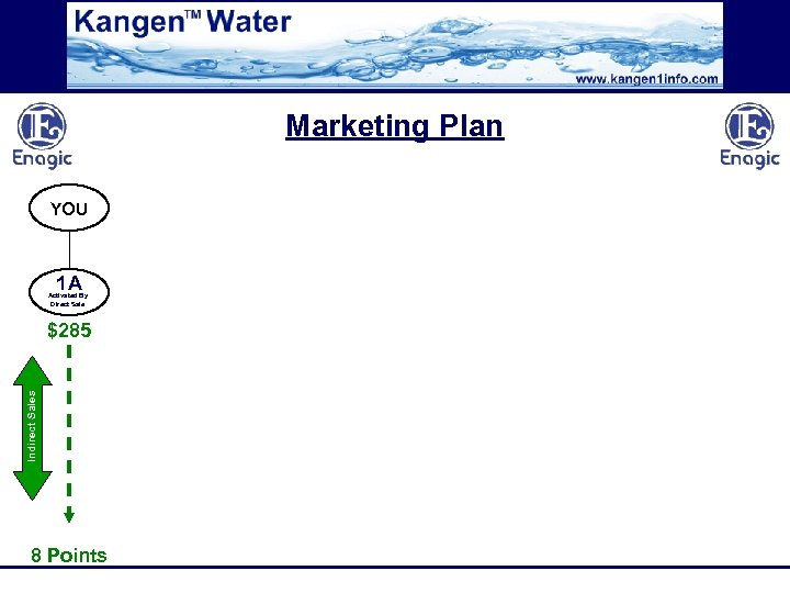 Marketing Plan YOU 1 A Activated By Direct Sale Indirect Sales $285 8 Points