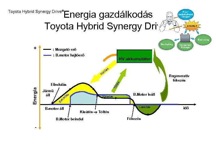 Energia gazdálkodás Toyota Hybrid Synergy Drive® + : Mozgató erő : B. motor hajtóerő