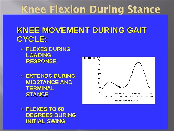 Knee Flexion During Stance