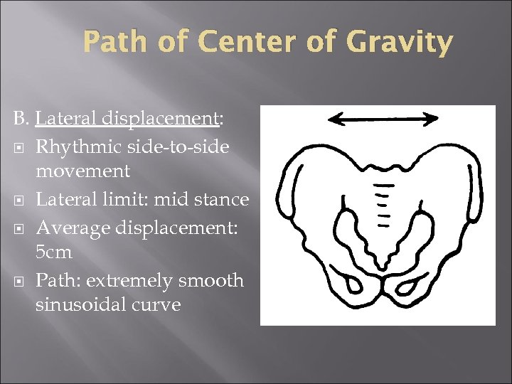 Path of Center of Gravity B. Lateral displacement: Rhythmic side-to-side movement Lateral limit: mid