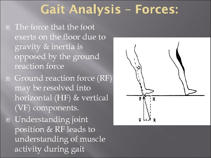 Gait Analysis – Forces: The force that the foot exerts on the floor due