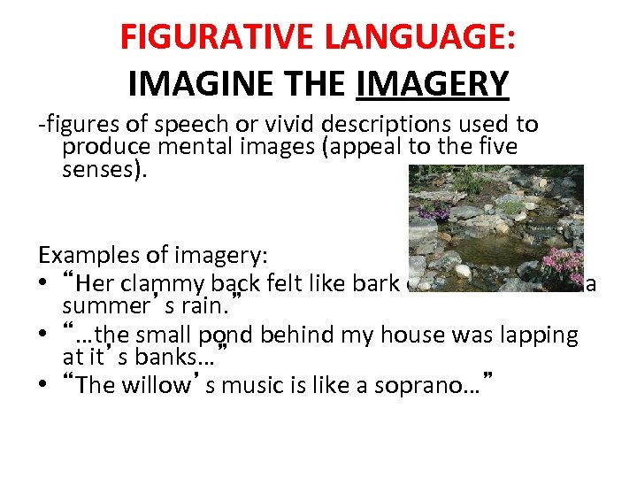 FIGURATIVE LANGUAGE: IMAGINE THE IMAGERY -figures of speech or vivid descriptions used to produce