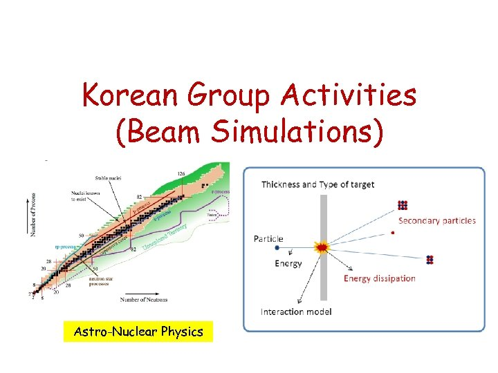 Korean Group Activities (Beam Simulations) Astro-Nuclear Physics
