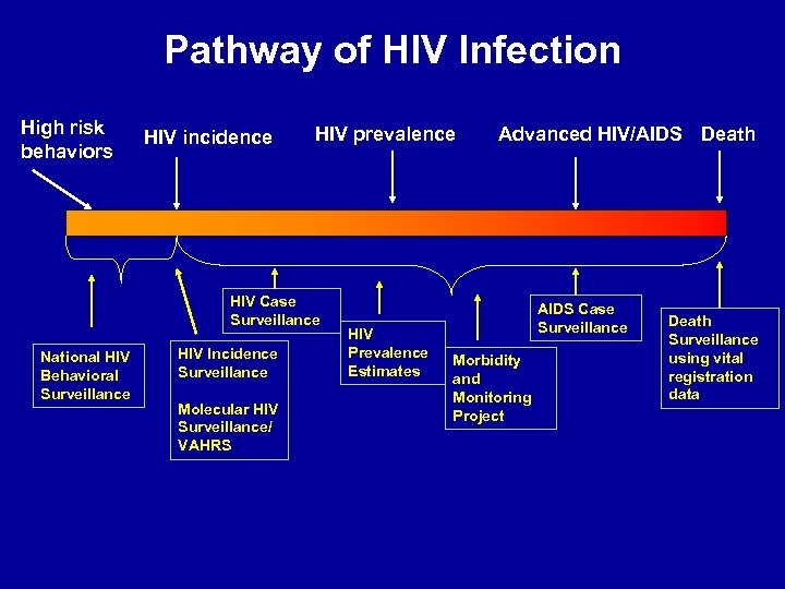 Pathway of HIV Infection High risk behaviors HIV incidence HIV prevalence HIV Case Surveillance