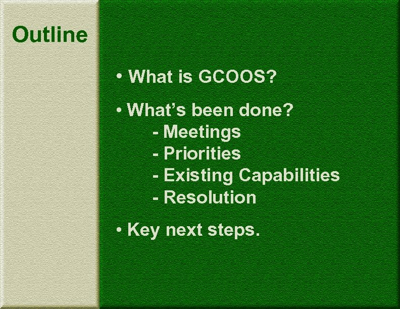 Outline • What is GCOOS? • What's been done? - Meetings - Priorities -