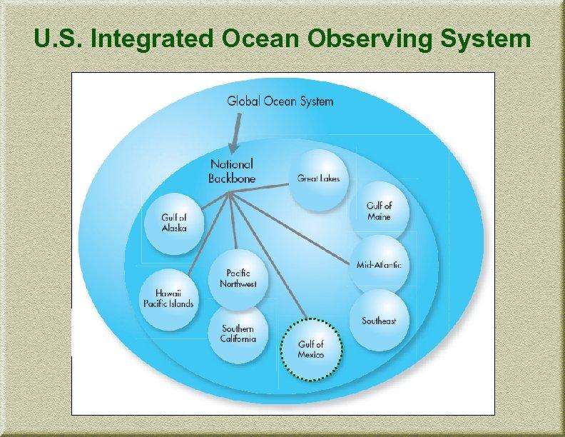 U. S. Integrated Ocean Observing System