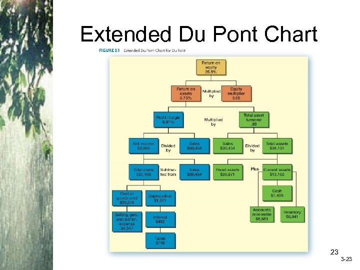 Extended Du Pont Chart Insert Figure 3. 1 (Extended Du. Pont Chart) 23 3