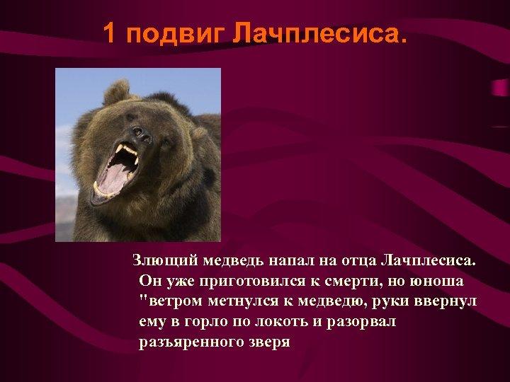 1 подвиг Лачплесиса. Злющий медведь напал на отца Лачплесиса. Он уже приготовился к смерти,