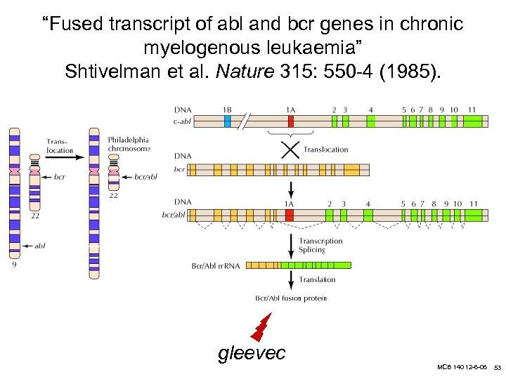 """Fused transcript of abl and bcr genes in chronic myelogenous leukaemia"" Shtivelman et al."