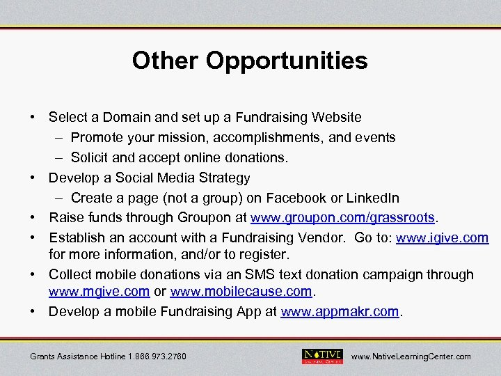 Other Opportunities • Select a Domain and set up a Fundraising Website – Promote