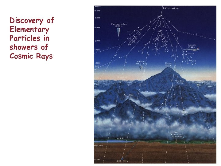 Discovery of Elementary Particles in showers of Cosmic Rays
