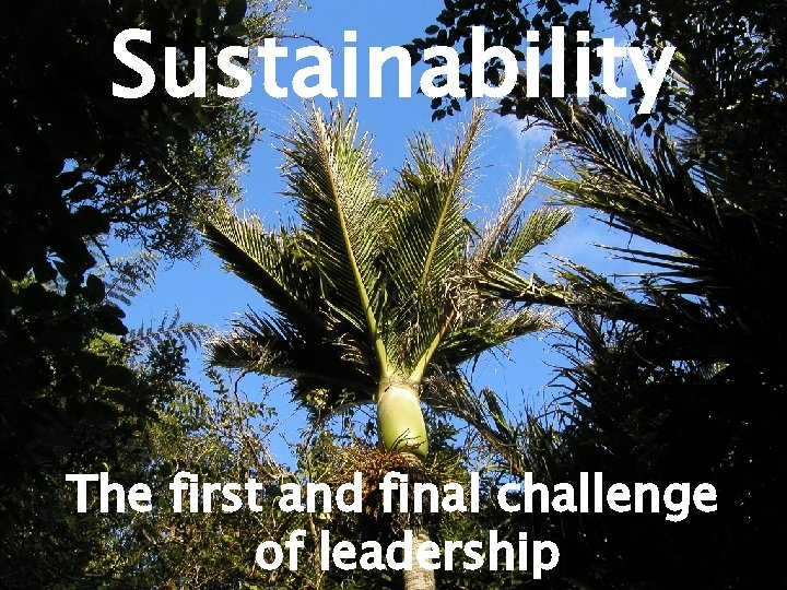 Sustainability The first and final challenge of leadership