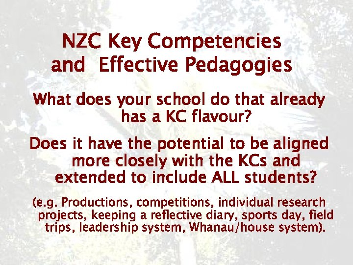 NZC Key Competencies and Effective Pedagogies What does your school do that already has