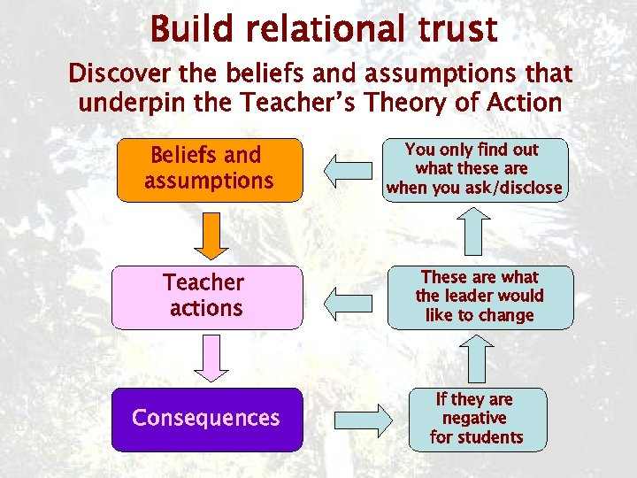 Build relational trust Discover the beliefs and assumptions that underpin the Teacher's Theory of