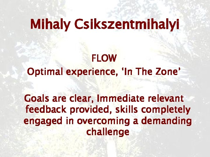 Mihaly Csikszentmihalyi FLOW Optimal experience, 'In The Zone' Goals are clear, Immediate relevant feedback