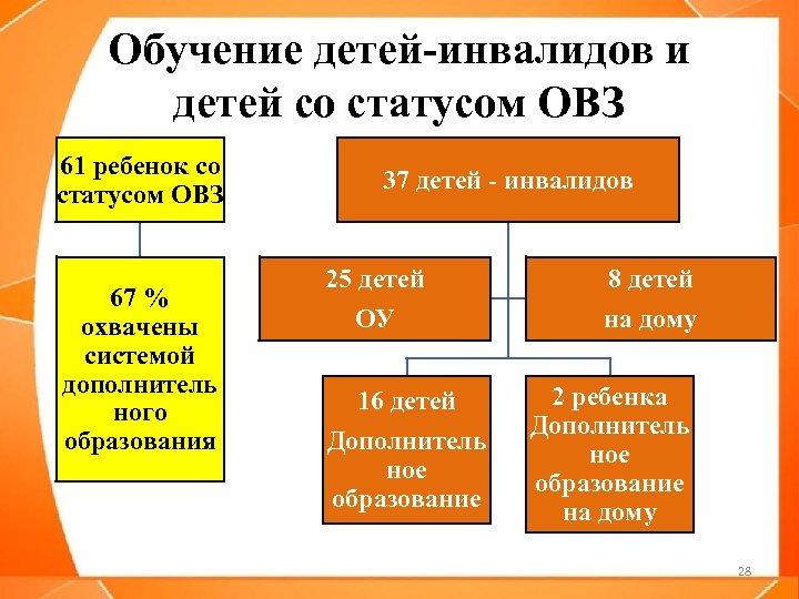 Обучение детей-инвалидов и детей со статусом ОВЗ 61 ребенок со статусом ОВЗ 67 %