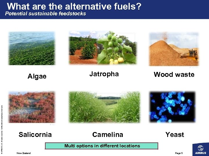 What are the alternative fuels? Potential sustainable feedstocks © AIRBUS S. All rights reserved.