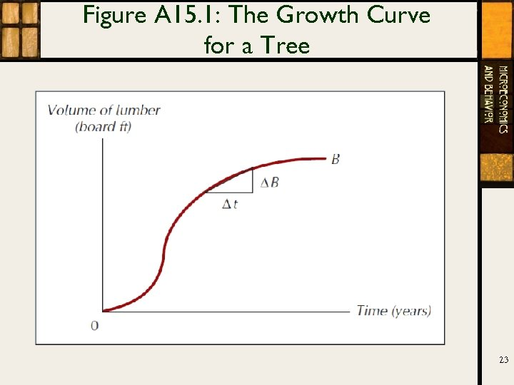 Figure A 15. 1: The Growth Curve for a Tree 23