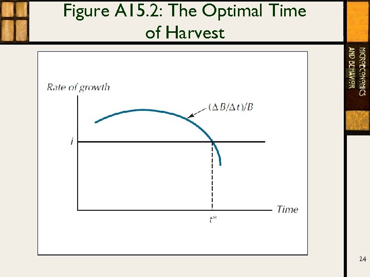 Figure A 15. 2: The Optimal Time of Harvest 24