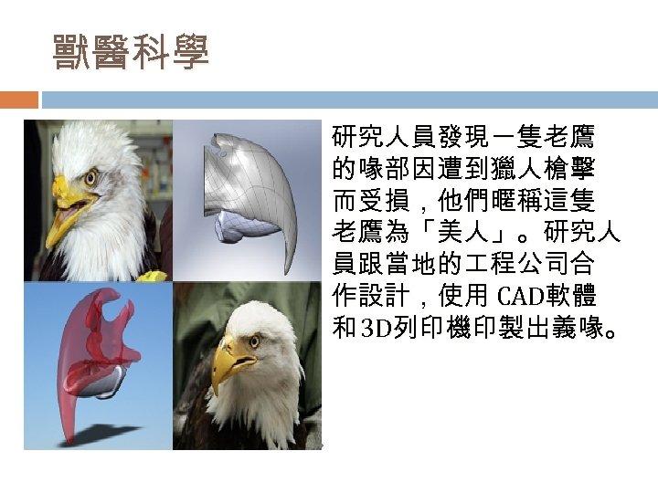 獸醫科學 研究人員發現一隻老鷹 的喙部因遭到獵人槍擊 而受損,他們暱稱這隻 老鷹為「美人」。研究人 員跟當地的 程公司合 作設計,使用 CAD軟體 和 3 D列印機印製出義喙。