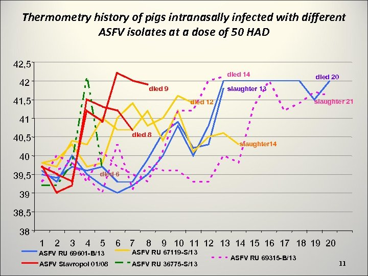 Thermometry history of pigs intranasally infected with different ASFV isolates at a dose of