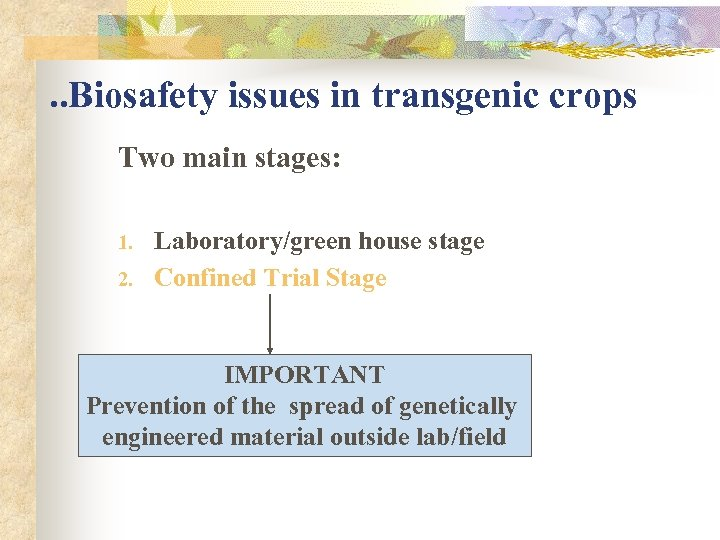 . . Biosafety issues in transgenic crops Two main stages: 1. 2. Laboratory/green house