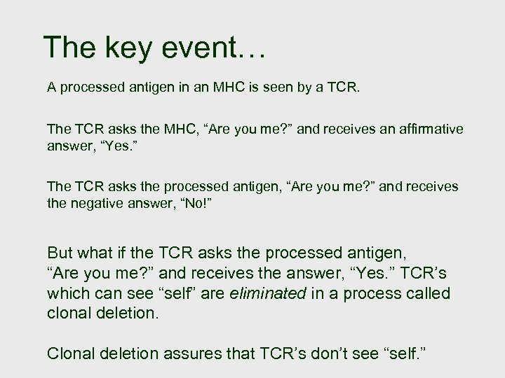 The key event… A processed antigen in an MHC is seen by a TCR.