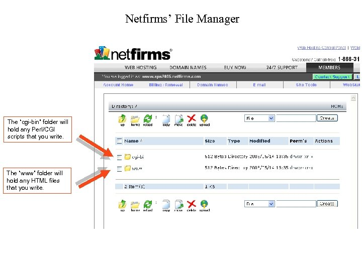 """Netfirms' File Manager The """"cgi-bin"""" folder will hold any Perl/CGI scripts that you write."""