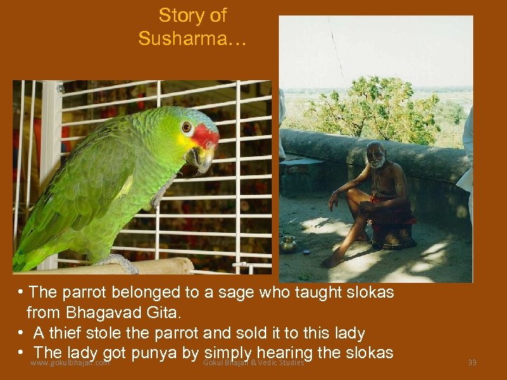 Story of Susharma… • The parrot belonged to a sage who taught slokas from
