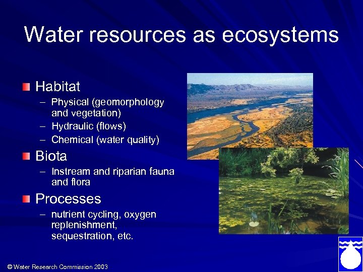 Water resources as ecosystems Habitat – Physical (geomorphology and vegetation) – Hydraulic (flows) –