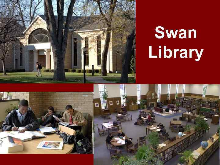 Swan Library