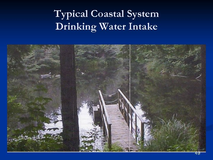 Typical Coastal System Drinking Water Intake 49