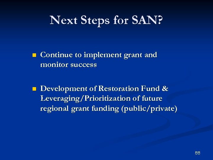 Next Steps for SAN? n Continue to implement grant and monitor success n Development