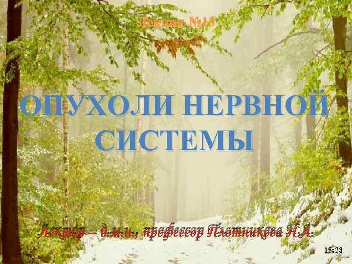 Лекция № 13 ОПУХОЛИ НЕРВНОЙ СИСТЕМЫ Лектор – д. м. н. , профессор Плотникова