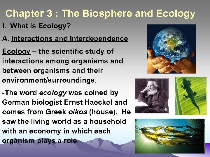 Chapter 3 : The Biosphere and Ecology I. What is Ecology? A. Interactions and