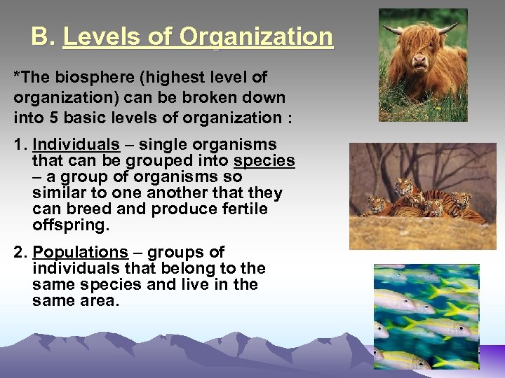 B. Levels of Organization *The biosphere (highest level of organization) can be broken down