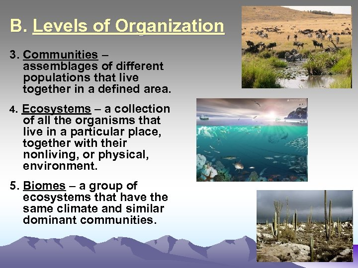 B. Levels of Organization 3. Communities – assemblages of different populations that live together