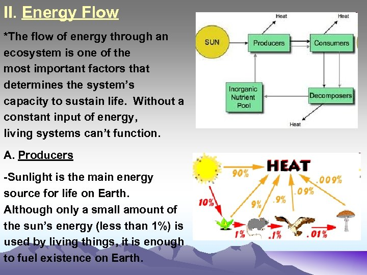 II. Energy Flow *The flow of energy through an ecosystem is one of the