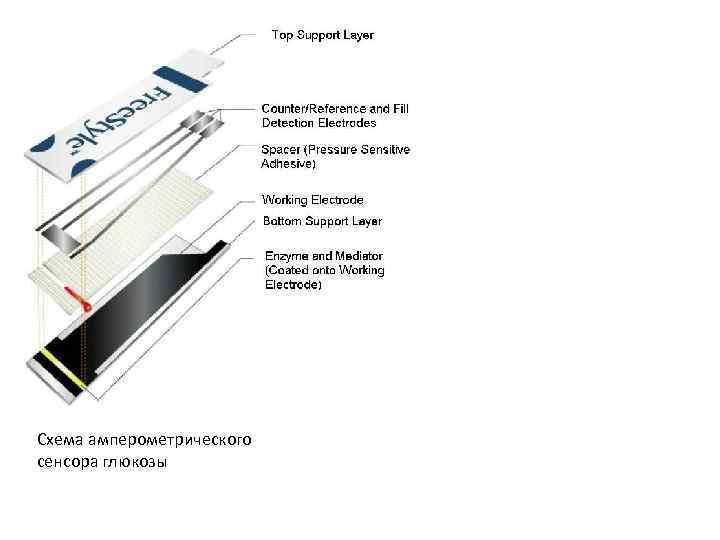 Схема амперометрического сенсора глюкозы